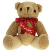 Honey Bear 25cm Sash