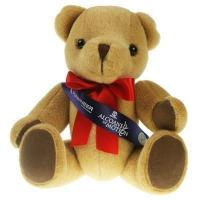 Honey Bear 30cm Sash