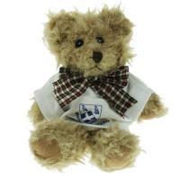 Windsor Bear 15cm T-shirt