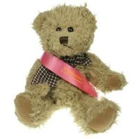 Windsor Bear 25cm Sash