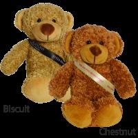 20cm Barney Bear Sash