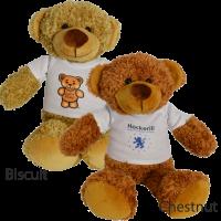 30cm Barney Bear