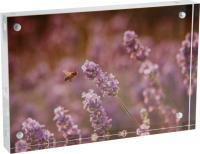 AB01 Acrylic Display Block