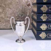Small Silver Trophy cup