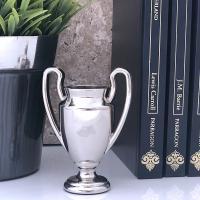 Medium Silver Trophy Cup
