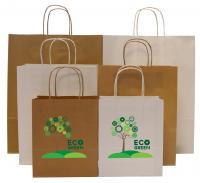 Hardwick A4 100gsm Kraft Paper Bag with Twisted Paper Handles