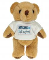 13CM HONEY JOINTED TSHIRT BEAR E1016503