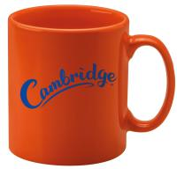 CAMBRIDGE MUG  E114505