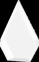 Award - Pentagonal (Spot Colour Print)